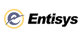Entisys and Agile
