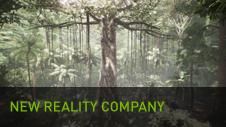 New Reality Company