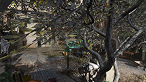 Call of Duty: Modern Warfare - Anti-Aliasing Example #002 - Filmic SMAA T2X