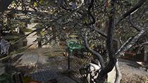 Call of Duty: Modern Warfare - Anti-Aliasing Example #002 - SMAA 1X