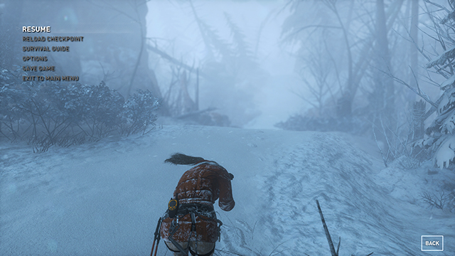 Rise of the Tomb Raider - Depth of Field Interactive Comparison #003 - Very High vs. Off