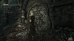 Rise of the Tomb Raider - Texture Quality Example #002 - Low